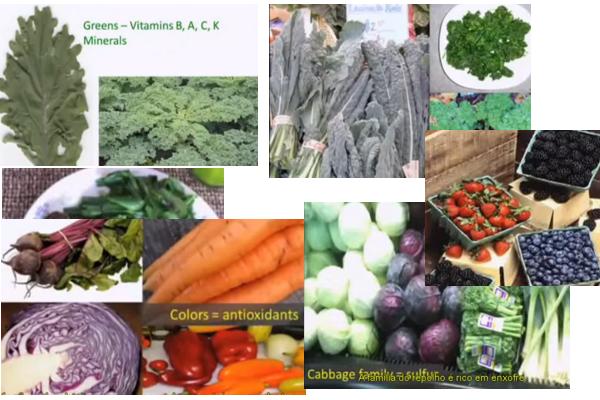 Montagem de imagens do vídeo, que resume a dieta (como se parece com a paleo, não é?)