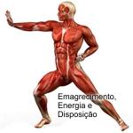 Equilíbrio funcional, energia e disposição. Indo além do emagrecimento com low carb.